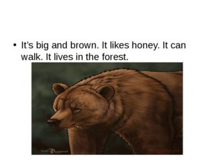 It's big and brown. It likes honey. It can walk. It lives in the forest.