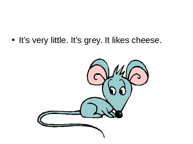 It's very little. It's grey. It likes cheese.
