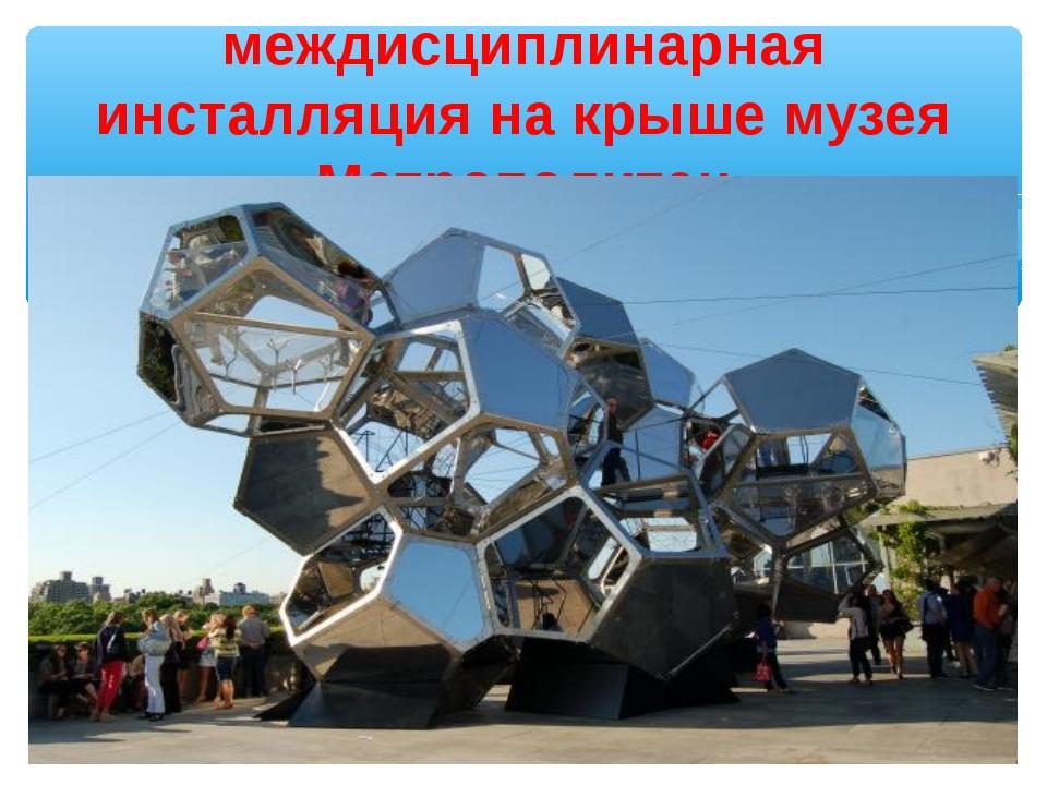 междисциплинарная инсталляция на крыше музея Метрополитен