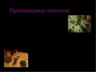 Производные конопли Марихуана – высушенная или не высушенная зеленая травянис