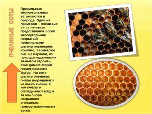 Правильные многоугольники встречаются в природе. Один из примеров – пчелиные