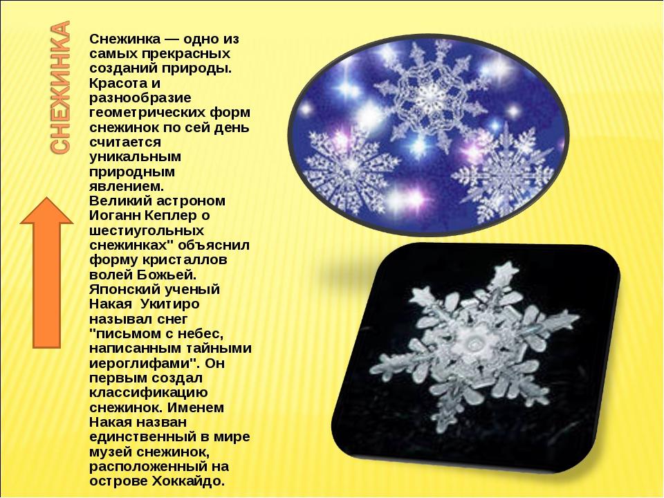 Снежинка — одно из самых прекрасных созданий природы. Красота и разнообразие...