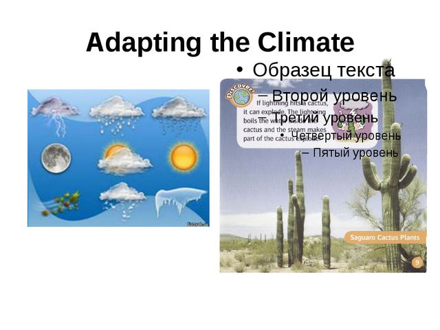 Adapting the Climate