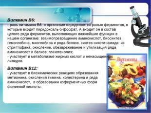 www.themegallery.com Витамин В6: - роль витамина В6 в организме определяется