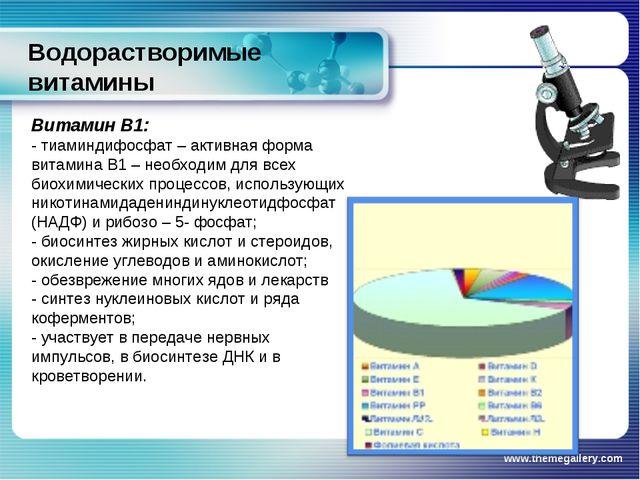 Водорастворимые витамины www.themegallery.com Витамин В1: - тиаминдифосфат –...