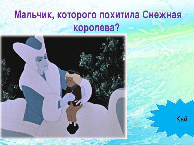 Мальчик, которого похитила Снежная королева? Кай