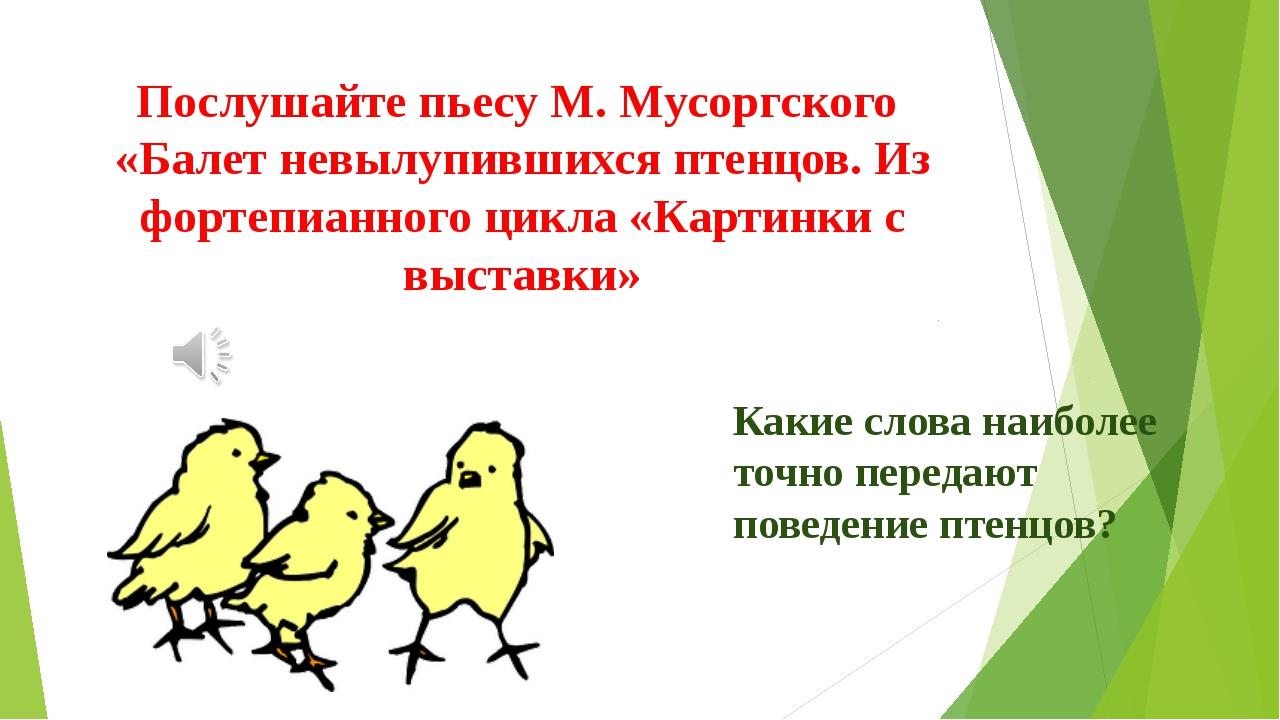 Послушайте пьесу М. Мусоргского «Балет невылупившихся птенцов. Из фортепианно...