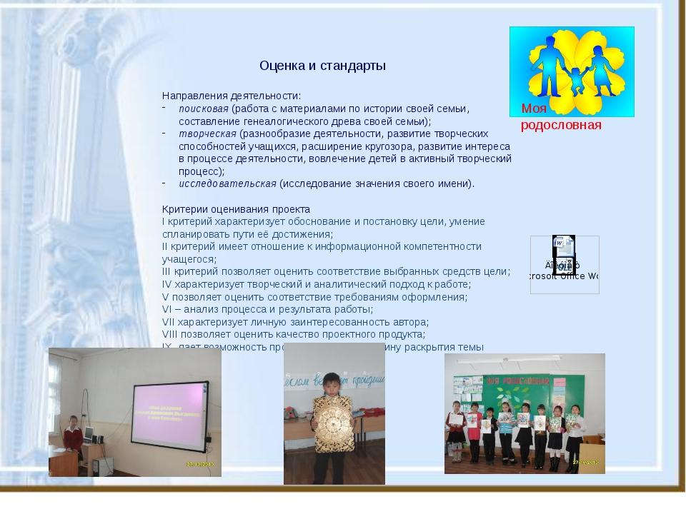Оценка и стандарты Направления деятельности: поисковая (работа с материалами...