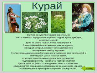 В духовной культуре башкир значительное место занимают народные инструменты