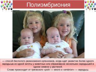 Полиэмбриония — способ бесполого размножения организмов, когда идет развитие