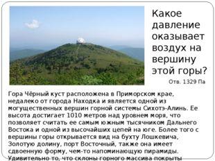 Гора Чёрный куст расположена в Приморском крае, недалеко от города Находка и