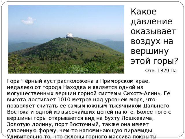 Гора Чёрный куст расположена в Приморском крае, недалеко от города Находка и...