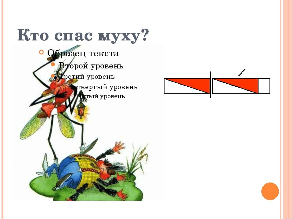 Кто спас муху?
