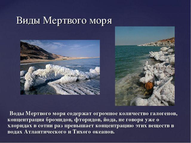 Воды Мертвого моря содержат огромное количество галогенов, концентрация бром...