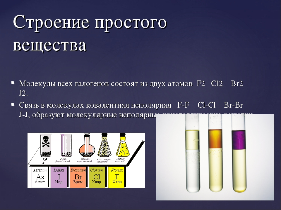 Молекулы всех галогенов состоят из двух атомов F2 Cl2 Br2 J2. Связь в молекул...