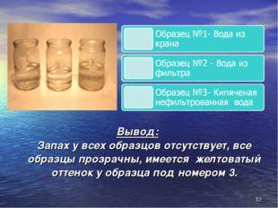 Вывод: Запах у всех образцов отсутствует, все образцы прозрачны, имеется желт