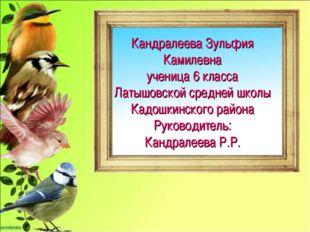 Кандралеева Зульфия Камилевна ученица 6 класса Латышовской средней школы Кадо