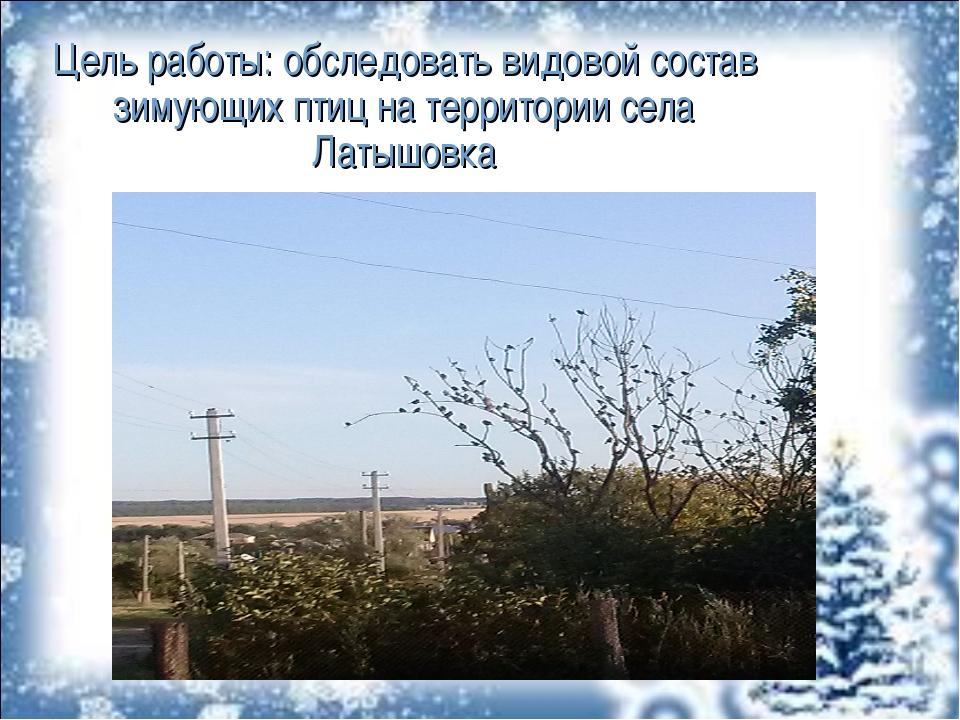 Цель работы: обследовать видовой состав зимующих птиц на территории села Латы...