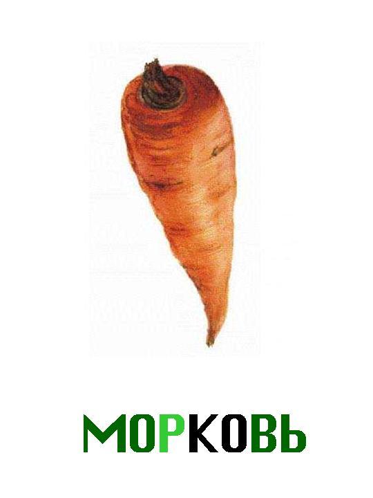 http://900igr.net/datas/eda/Ovoschi-2.files/0026-026-Morkov.jpg