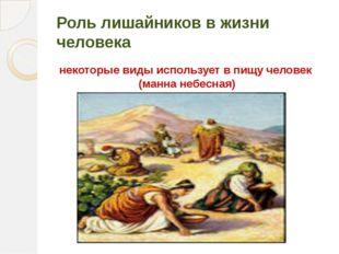 Роль лишайников в жизни человека некоторые виды использует в пищу человек (ма