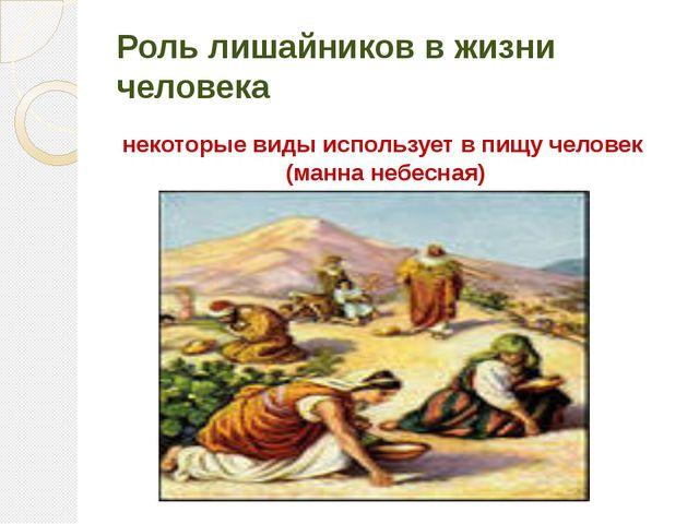 Роль лишайников в жизни человека некоторые виды использует в пищу человек (ма...