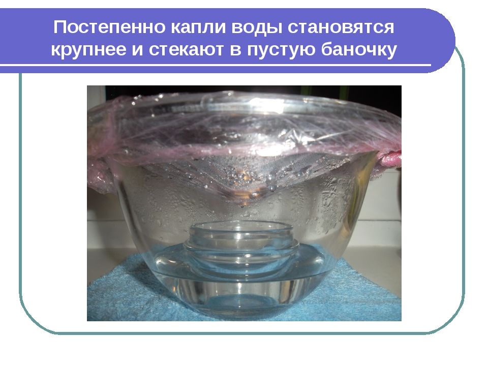 Постепенно капли воды становятся крупнее и стекают в пустую баночку