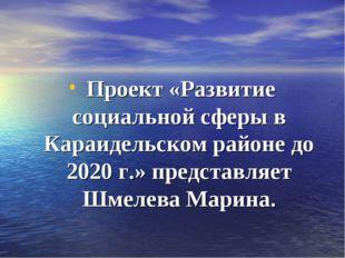 Проект «Развитие социальной сферы в Караидельском районе до 2020 г.» предста