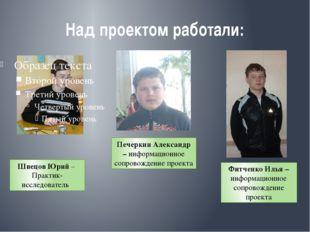 Над проектом работали: Швецов Юрий – Практик-исследователь Печеркин Александр