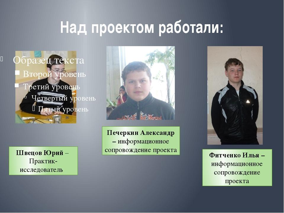 Над проектом работали: Швецов Юрий – Практик-исследователь Печеркин Александр...