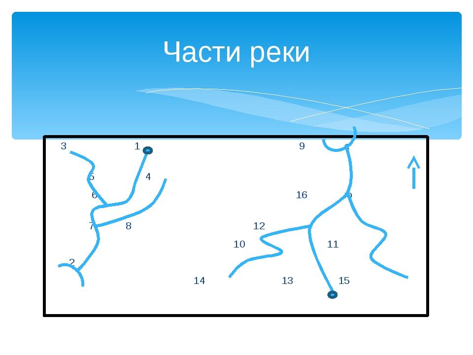 3 1 9 с 5 4 6 16 ю 7 8 12 10 11 2 14 13 15 Части реки