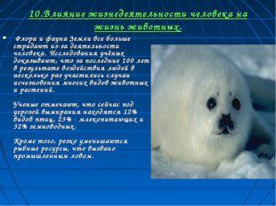 10.Влияние жизнедеятельности человека на жизнь животных. Флора и фауна Земли