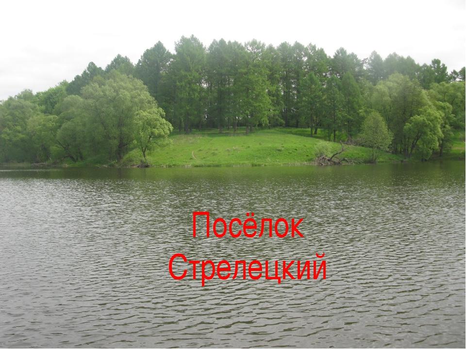 Посёлок Стрелецкий