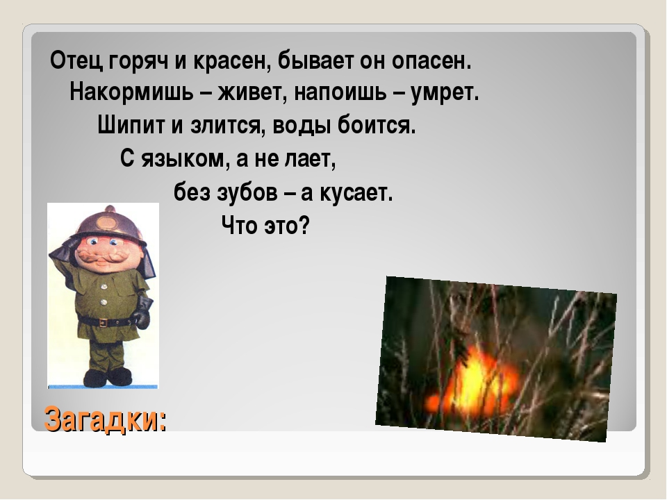 Загадки: Отец горяч и красен, бывает он опасен. Накормишь – живет, напоишь –...