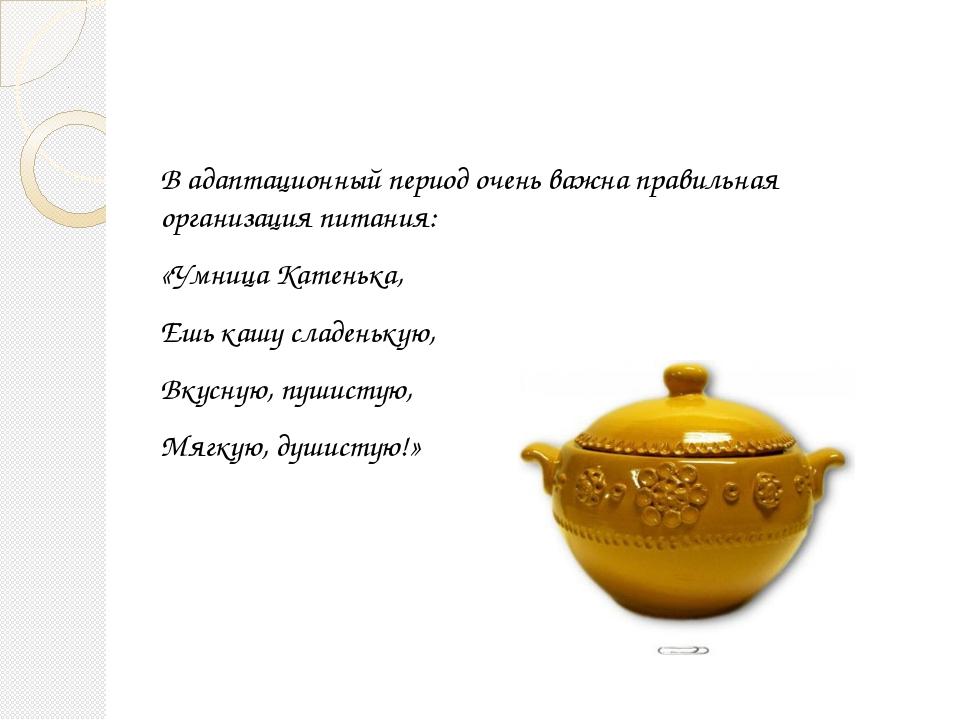 В адаптационный период очень важна правильная организация питания: «Умница Ка...