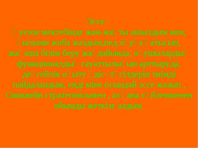 Эссе : Әуезов мектебінде жан-жақты ашылдым мен, ғылыми жоба жаздым,пед оқуға...