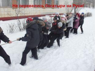 Не перевелись богатыри на Руси!