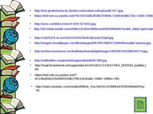 http://test.grodnonews.by.baraka.neolocation.net/uploads/1317.jpg https://im0