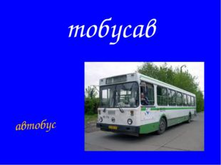 тобусав автобус
