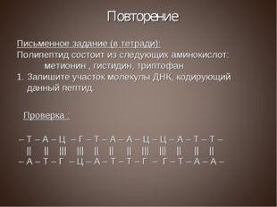 Повторение Письменное задание (в тетради): Полипептид состоит из следующих ам