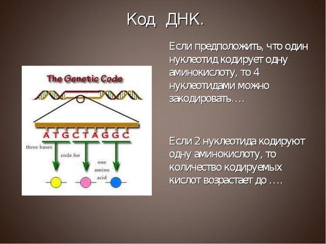 Если предположить, что один нуклеотид кодирует одну аминокислоту, то 4 нуклео...