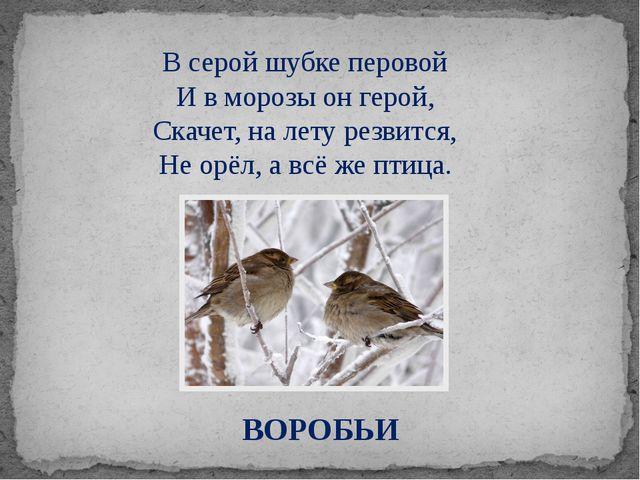 ВОРОБЬИ В серой шубке перовой И в морозы он герой, Скачет, на лету резвится,...