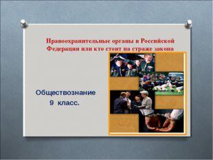 Правоохранительные органы в Российской Федерации или кто стоит на страже зако