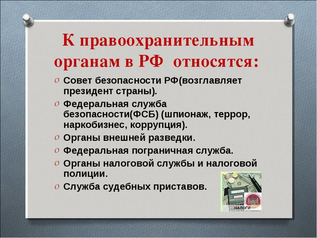 К правоохранительным органам в РФ относятся: Совет безопасности РФ(возглавляе...