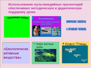 Использование мультимедийных презентаций обеспечивает методическую и дидактич