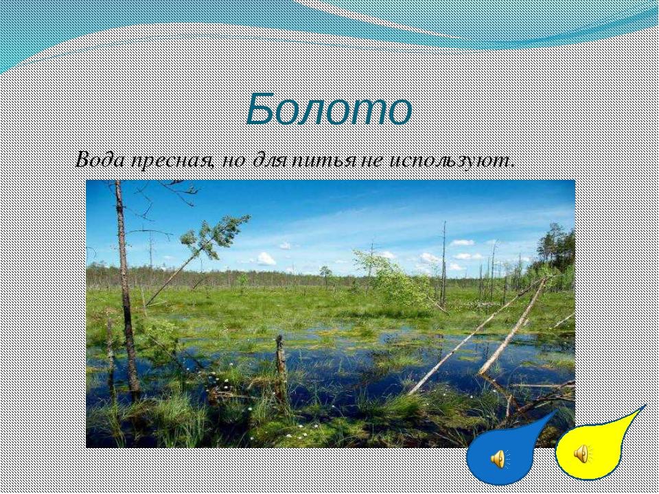 Болото Вода пресная, но для питья не используют.