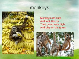monkeys Monkeys are cute And look like us. They jump very high And play on th