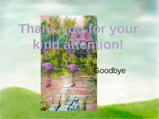 Thank you for your kind attention! Goodbye
