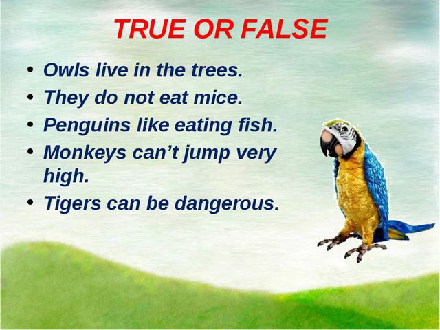 TRUE OR FALSE Owls live in the trees. They do not eat mice. Penguins like eat...