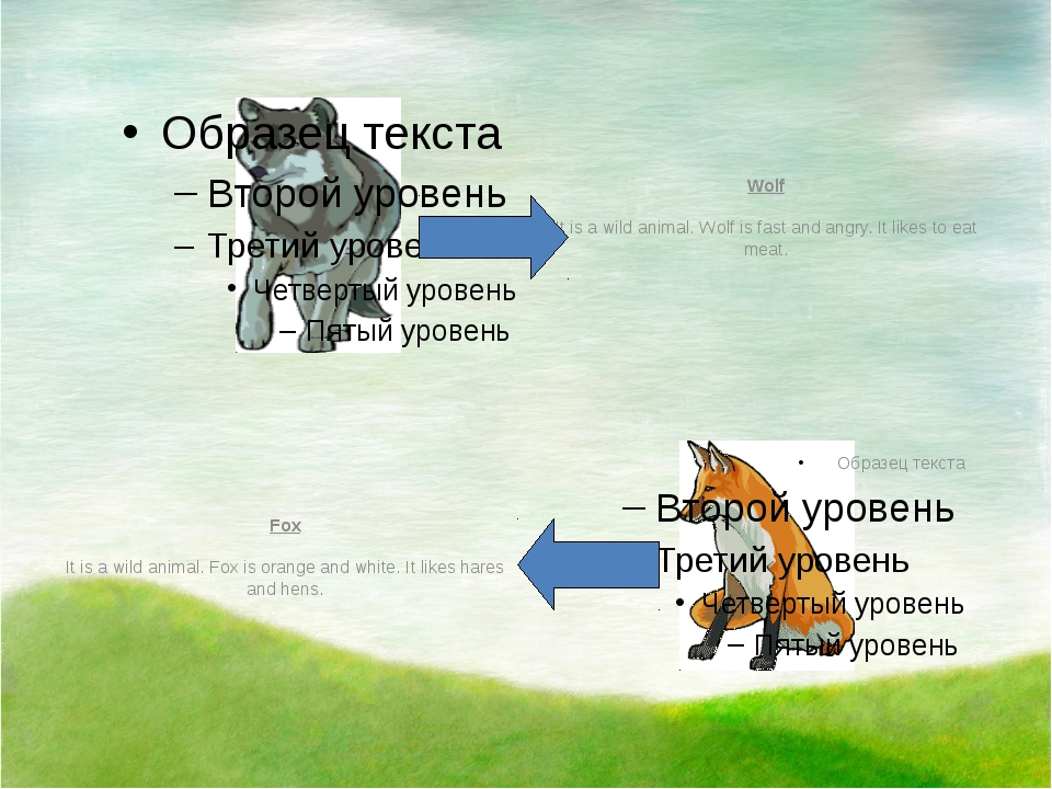 Wolf It is a wild animal. Wolf is fast and angry. It likes to eat meat. Fox...