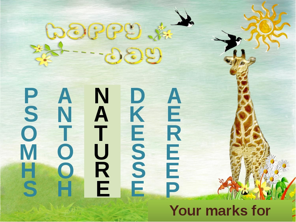 P A N D A Your marks for today are the following… S N A K E O T T E R M O U S...